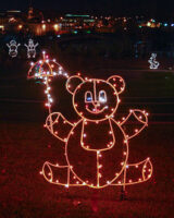teddy bear outlined in lights